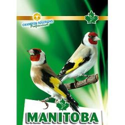 Cardellini Premium Manitoba 1 Kg. Scad 09/21
