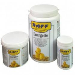 Energette 100 gr Scad. 10/2022