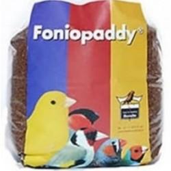 Foniopaddy 1kg scad. 01/21