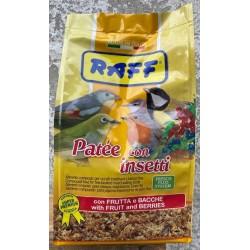 Patèe con insetti Raff 400 gr. Scad. 03/2022