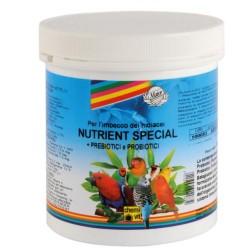 Nutrient Special 250g. Scad. 04/2022